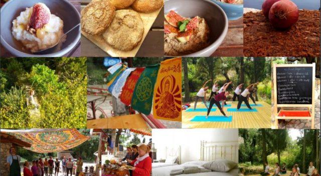 Food Path Yoga Villa in Lefkada